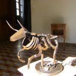 taureau sculpture sur fer